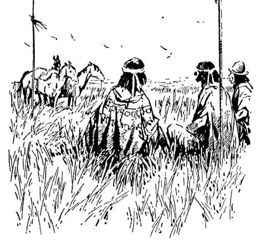 157g.Mapucze