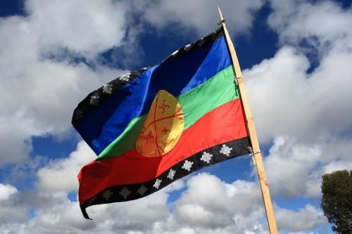 157x.mapuche-flag