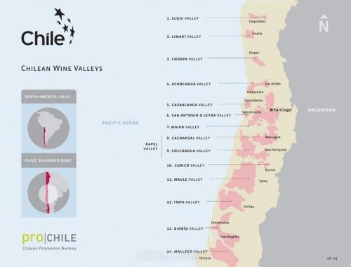 20b.chile wina