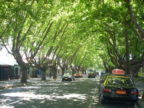 4.Chillán Avenida O'Higgins typowe czasem aleje